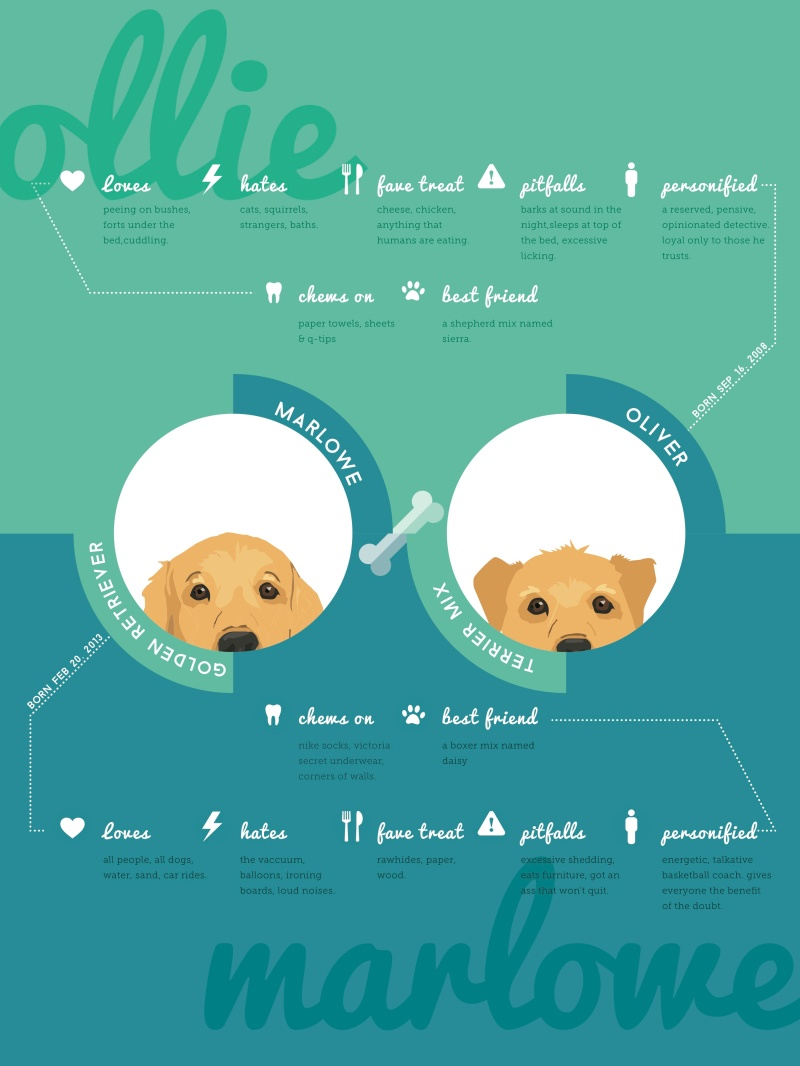 Ollie&Marlowe_Infographic